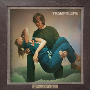 Trampolene - Shoot The Lights